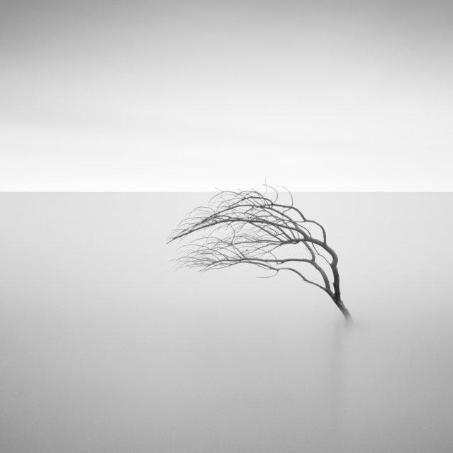 simplicity4